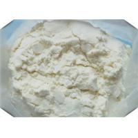 China 99% Purity Muscle Building Steroids White Powder Testosterone Enanthate CAS 315 37 7 on sale