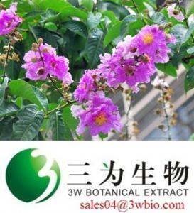 China Banaba Leaf Extract 20% Corosolic Acid on sale