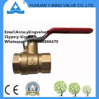 Quality Brass Ball Valve with Lock Water Meter(YD-108) wholesale