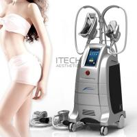 Quality Body Slimming And Shaping Cryolipolysis 2 Handles Fat Freezing Machine Weight Losing Slimming Machine wholesale
