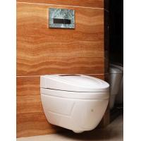 Quality New design ceramic intelligent smart wall hung toilet wholesale