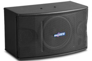 Quality 10 inch  full range karaoke speaker OK-220 wholesale