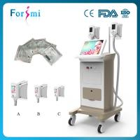 Quality Fast Result 40 Days Cryolipolysis Cryotherapy Slimming Machine wholesale