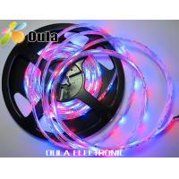 Buy cheap DC12V / DC24V Emergency RGB Flexible LED Strip Lights With 24W / 5M, 3 Units from wholesalers