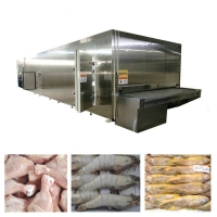 China 100kg/H SS304 Quick Freezer Vegetables Food Freezing Machine on sale