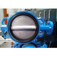 Quality PTFE Lined Centric Butterfly Valve Self Lubricated Shaft Bear ATEX Wafer Type Butterfly Valve wholesale