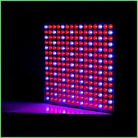 Quality IP54 Indoor LED Grow Lights / ABS Full Spectrum Plant Grow Lights 32 W For Greenhouse wholesale