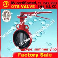 Cheap competitive price butterfly valve for sale