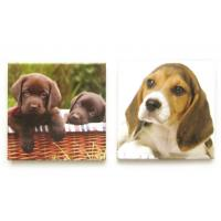 China Printed Dog Picture Fridge Magnet Make Your Own for Kids / Magnets For Refrigerator on sale