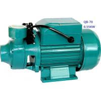 Quality 0.75HP 0.55KW Domestic Clean Water Pump For Pool Pumping / Garden Sprinkling wholesale