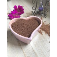 Quality AF02 Alkalized Cocoa Powder Health No Impurities For Ice Cream / Candy wholesale