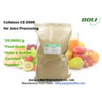 Quality Food Grade Cellulase Enzyme Powder Form High Enzyme Activity For Juice Production wholesale