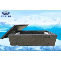 Quality Turnover Cooler Box Cold Chain Packaging For Food Storage Logistics Cold Chain Box wholesale