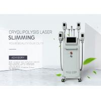 China Effective Coolsculpting Fat Reduction Machine /Shape And Freeze Fat Burning Machine on sale