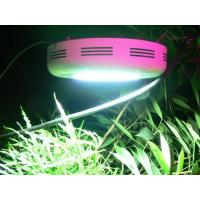 Quality energy saving 90W led plant growing lights 50 / 60HZ, red (620 - 630nm) for indoor garden wholesale