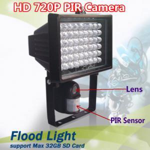 Quality Flood Light Security PIR DVR Camera IR LED Night Vision CCTV Surveillance DVR W/ 54pcs LED wholesale
