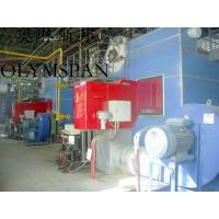 Quality Low Pressure Horizontal Heating Thermal Gas Oil Fired Boiler , High Temperature wholesale