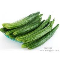 Buy cheap Cucumber Extract Enhance immunity, delaying aging Chinese Manufacturer Yongyuan from wholesalers