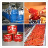 Quality Complete Tin Can Ketchup Tomato Paste Production Line 1 Year Warranty wholesale