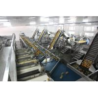 Quality Food Tin Can Production LineFully Semi Automatic 100-300 Cans Per Hour High Speed wholesale