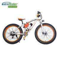 Quality EcoRider Fat Tire 26 Inch Wheel Electric Bike Off Road Electric Bikes Mountaine Electric Bicycle wholesale