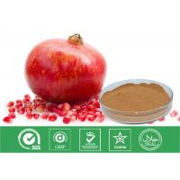 Quality Cosmetic Grade Natural Punica Granatum Extract Anti Oxidant / Descenting Blood Pressure wholesale