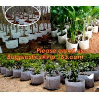 Quality Grow Bags with Flap and Handles Collapsible 10 gallons,garden plant growing pot felt grow bag with Handles, bagpac, pak wholesale