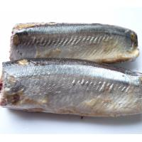 Quality Best canned Sardines in Oil/Brine Chinese Origin High Quality 425g wholesale