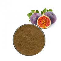 Quality Lower Blood Pressure Fumaric Acid Ficin Fig Fruit Powder Fig Extract Fig Powder wholesale