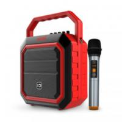 China New product 30w Karaoke Bluetooth Speaker with FM Radio and Flashing DJ Lights on sale