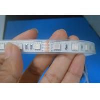 Quality DC24V IP67 RGB LED Strip Light , outdoor led light strips 12v waterproof wholesale