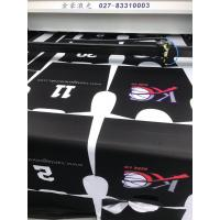 Quality Vision Laser for Digital Printing and Sportswear Garment Factory wholesale