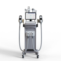 China -15-5℃ Temperature Weight Loss 1800w Cryolipolysis Slimming Machine on sale