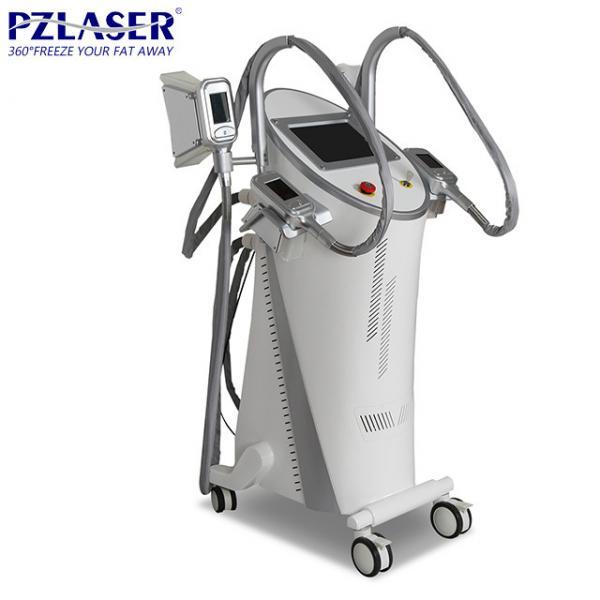 Cheap Movable Cryolipolysis Fat Freezing Machine 220V/50Hz 110V/50Hz CE / FDA Approval for sale