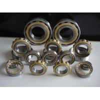 Quality Steel Gcr15 Skf Cylindrical Roller Bearing With Hot Pressed Customized wholesale