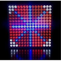 Quality 45 Watts Grow Light Hydroponic LED Grow Light 35W Square Panel With Color Red & Blue wholesale