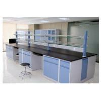 Quality ISO Certified Physics Lab Table High Load - Bearing Performance For School wholesale