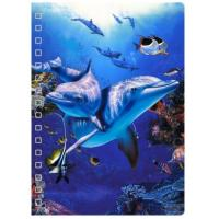 Quality 45 Sheets 3D PET Cover Lenticular Spiral A5 Notebook With UV Printing wholesale