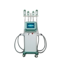 China Cellulite Removal 1000W 360 Degree Cryolipolysis Fat Freeze Slimming Machine on sale