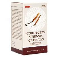 Quality Powerful Anti Aging Product -- Cordyceps Sinensis Capsule wholesale