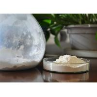 Buy cheap Natural 20% Protein Shark Cartilage Powder White With 20% Calcium from wholesalers