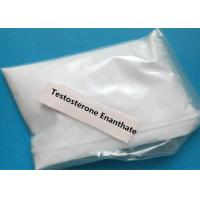 Quality White Testosterone Steroid Enanthate / Primoteston / Test E / Test Enan Testosterone Powder wholesale