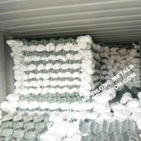 Quality 50mm Corrison Resistance Hot Dipped Galvanized Chain Link Fencing wholesale