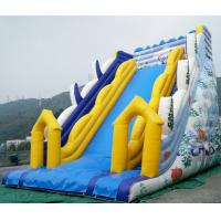 China Giant Inflatable slides with warranty 24months on sale