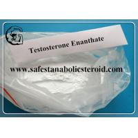 China Testosterone Enanthate Cutting Cycle Testosterone Steroid Powder Source CAS 315-37-7 on sale