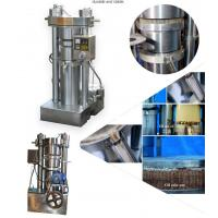 Quality Automatic Sesame Industrial Oil Press Machine With Simple Operation wholesale