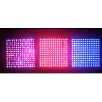 Quality 300W Built-in Cooling System Different Ratio Of Red / Blue High Power LED Grow Lights wholesale