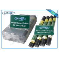 Quality Biodegradable Non Woven Landscape Fabric Roll Packing for Garden Plant Protection wholesale