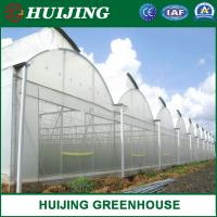 Quality Multi Span Polytunnel Film Agriculture Greenhouse with All Systems wholesale