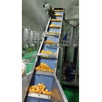 China Fully Automatic System Citrus Juice Producing Line on sale